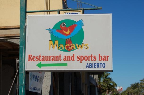 macaws-bar-loreto-baja-sur-mexico