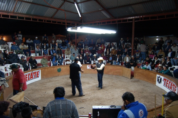 cockfights-loreto-baja-sur-mexico
