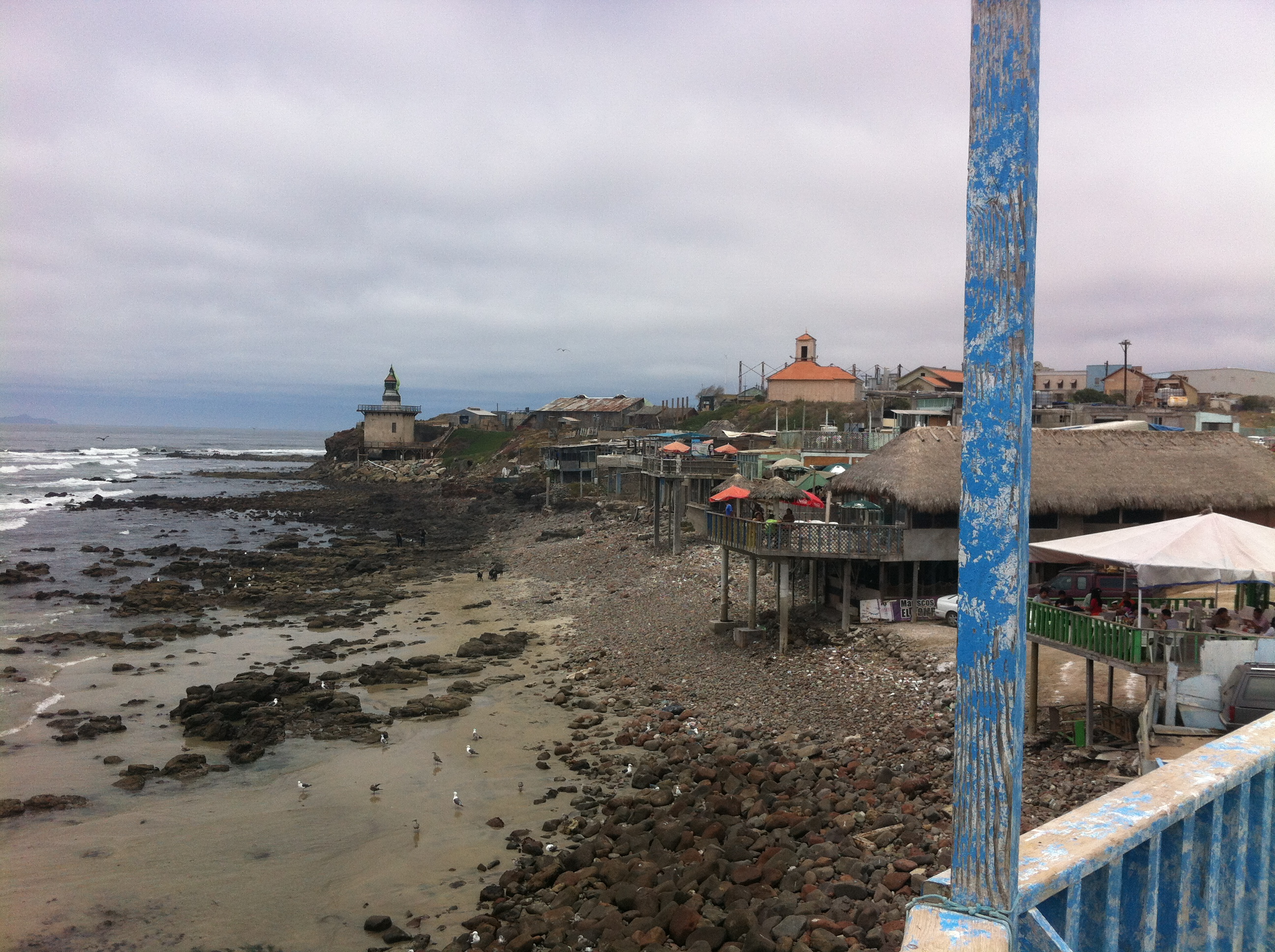 Something s fishy and very tasty in popotla a gringo for Baja california fishing
