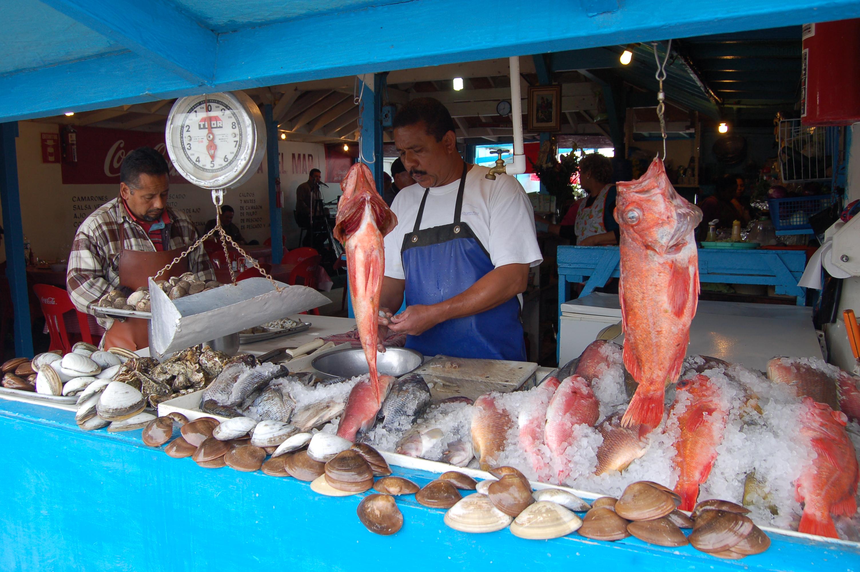 Popotla feeding my mariscos madness again a gringo in for Fish in mexico
